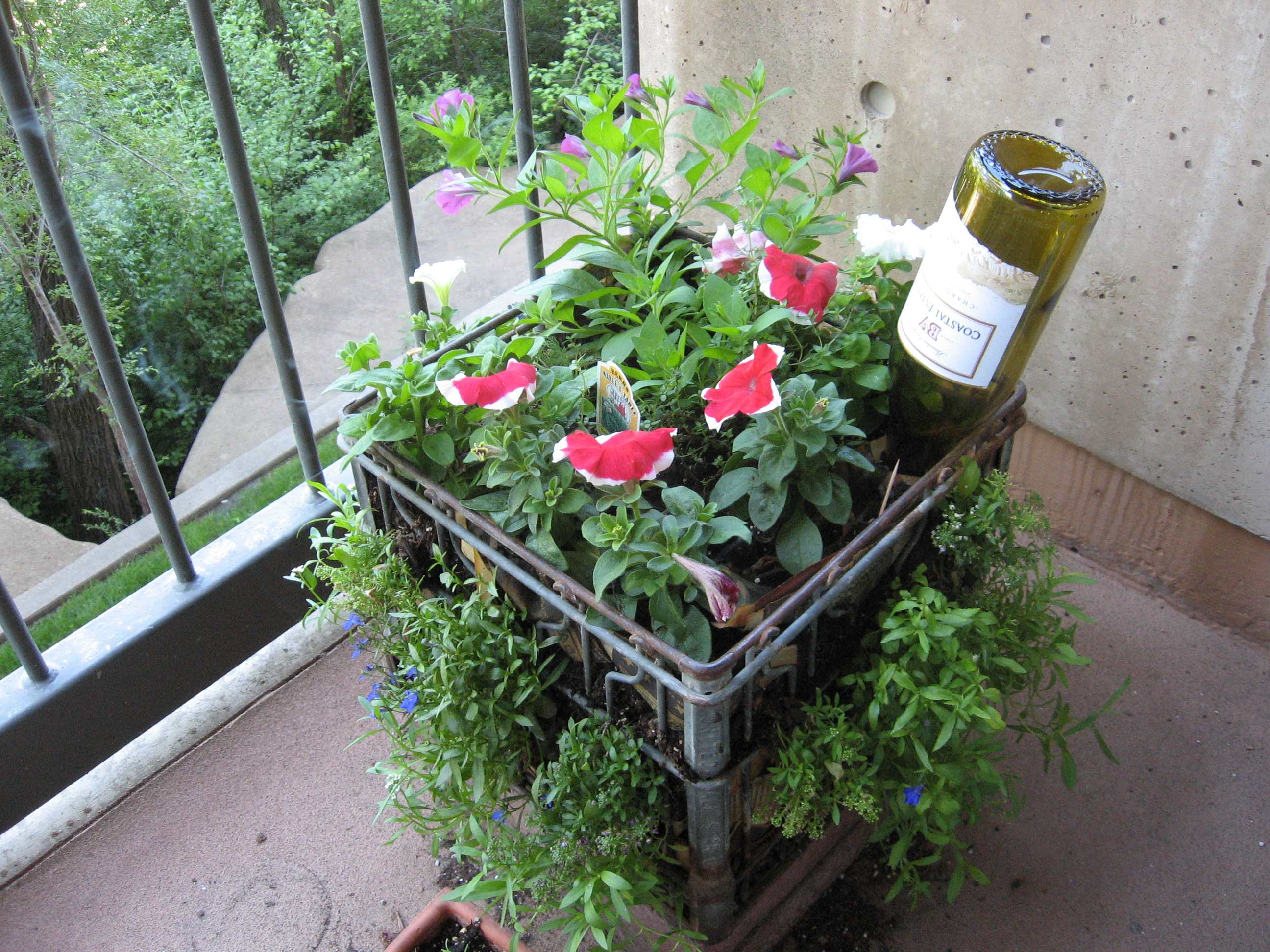 My milkcrate balcony container garden - What is a container garden ...